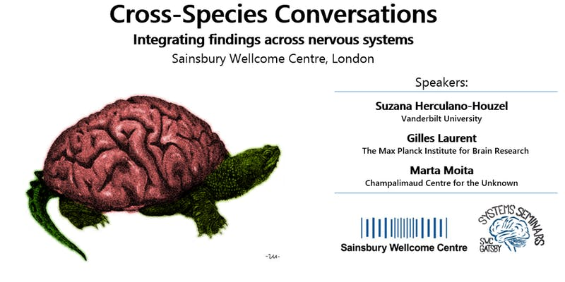 Cross-species conversations